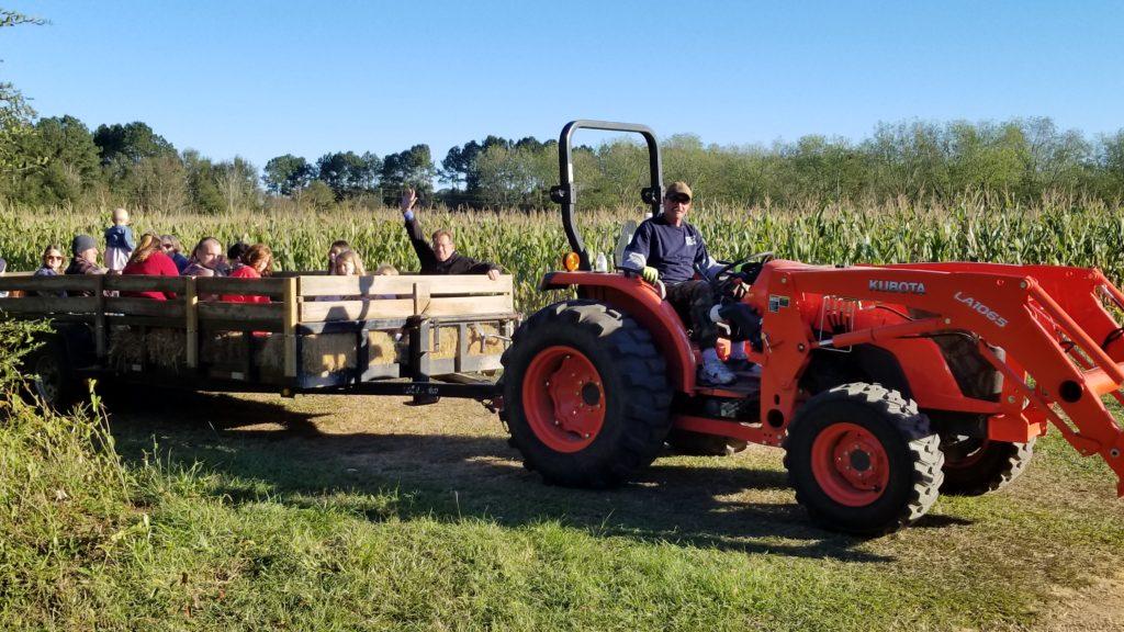 Hayride at Magnolia Corn Maze